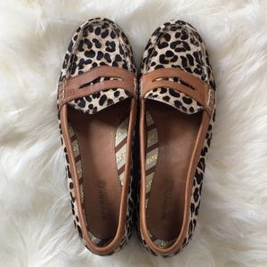 Sperrys Top Siders |  Cheetah Print Loafers